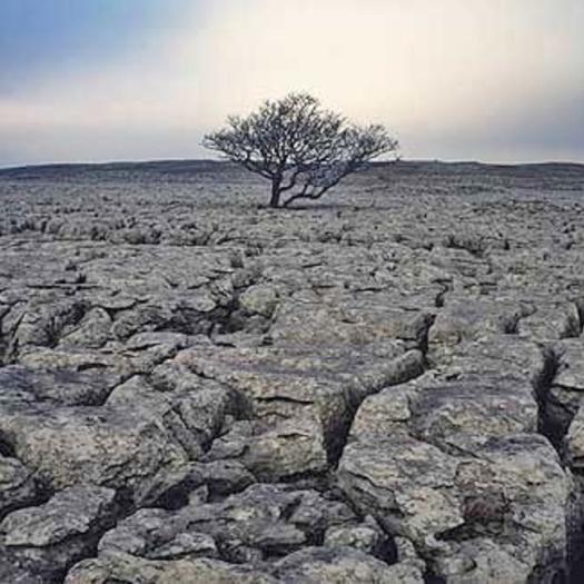Toprak ve İnsan
